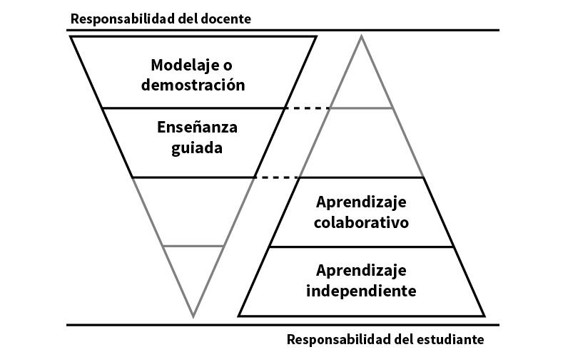 Modelo que ilustra el proceso de transferencia progresiva de la responsabilidad